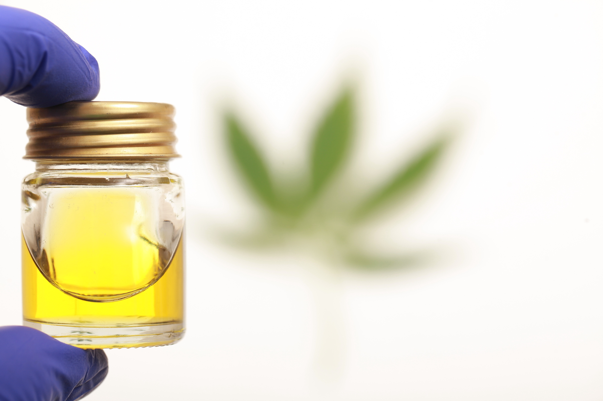 The role of the pandemic in the rise of CBD oil