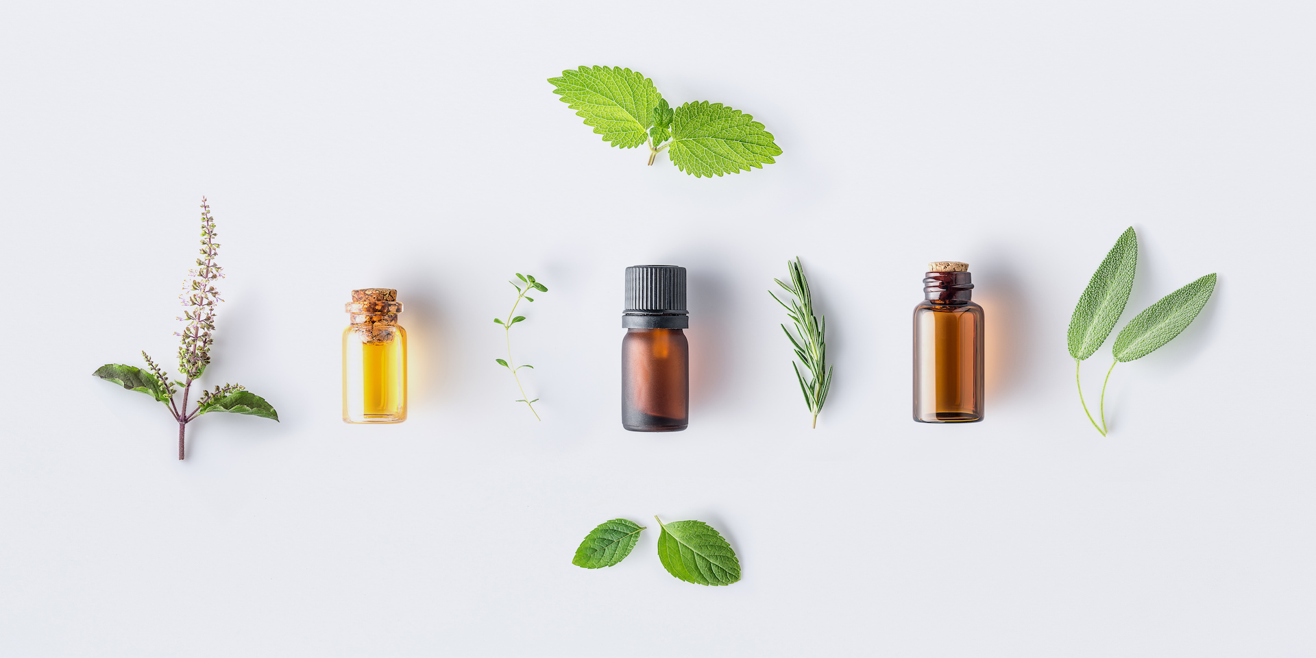 CBD oil and how does it work